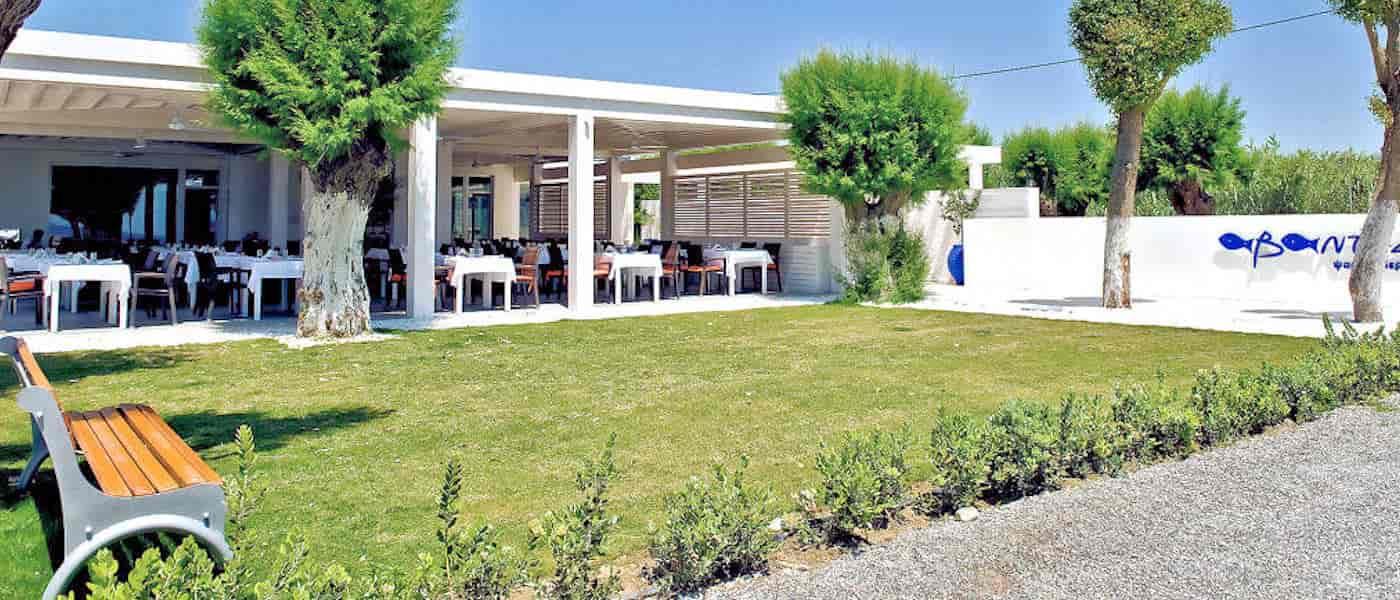 Leonardo Mediterranean Hotels & Resorts - Ψαροταβέρνα Αβάντης