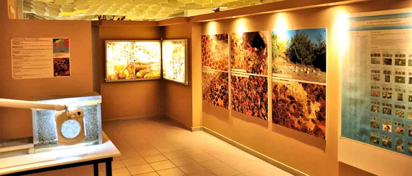 Leonardo Mediterranean Hotels & Resorts - Μουσείο Μέλισσας